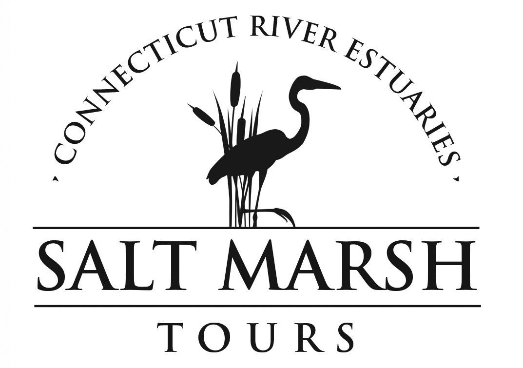 Shallow-Draft Boat Tours